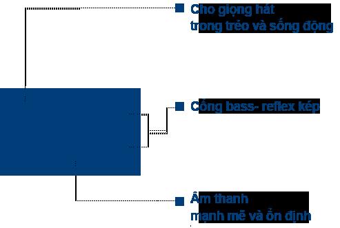 Loa Karaoke TJ TS-H100